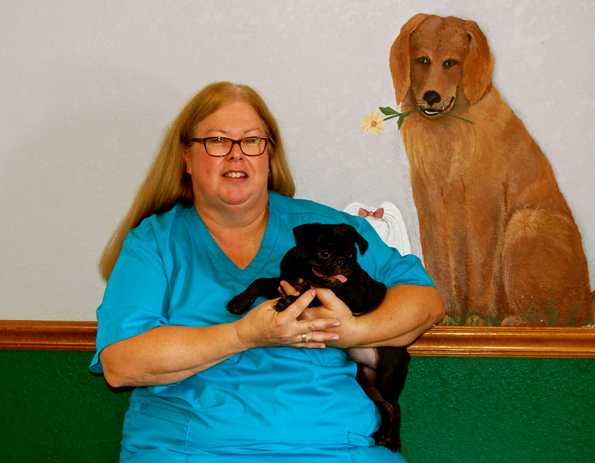 Tulsa Oklahoma Dog Photography Hunters Glen Veterinary